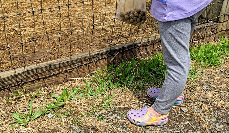 Berks County Oley Petting Zoo Tips
